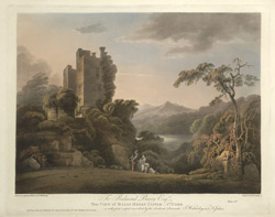 View of Bally Hooly Castle - Co. Cork